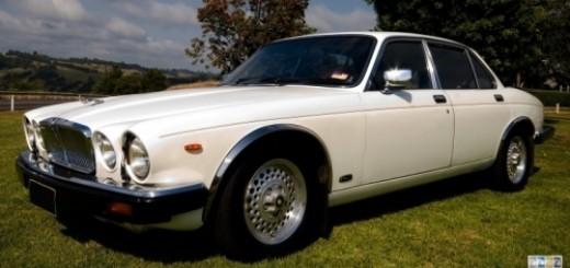 1254804806_Michael Makowski - Jaguar - 1