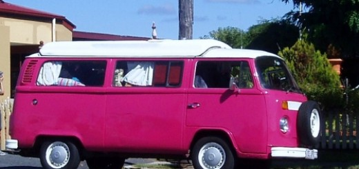1328220974_pink kombi 2