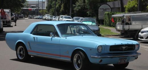 Mustang Thommo Mustang IMG_0234