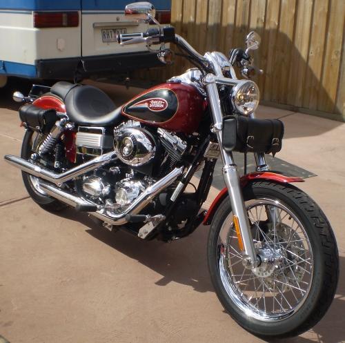 79716811339933274_Harley.jpg