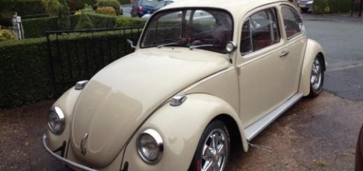 1427330120_Beetle 1