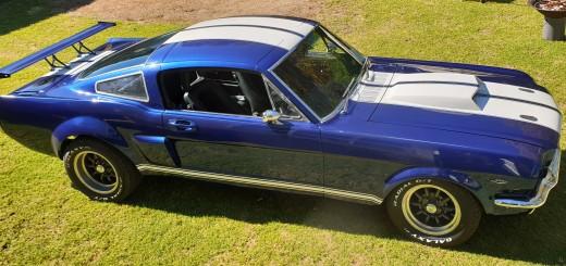 Mustang Roof